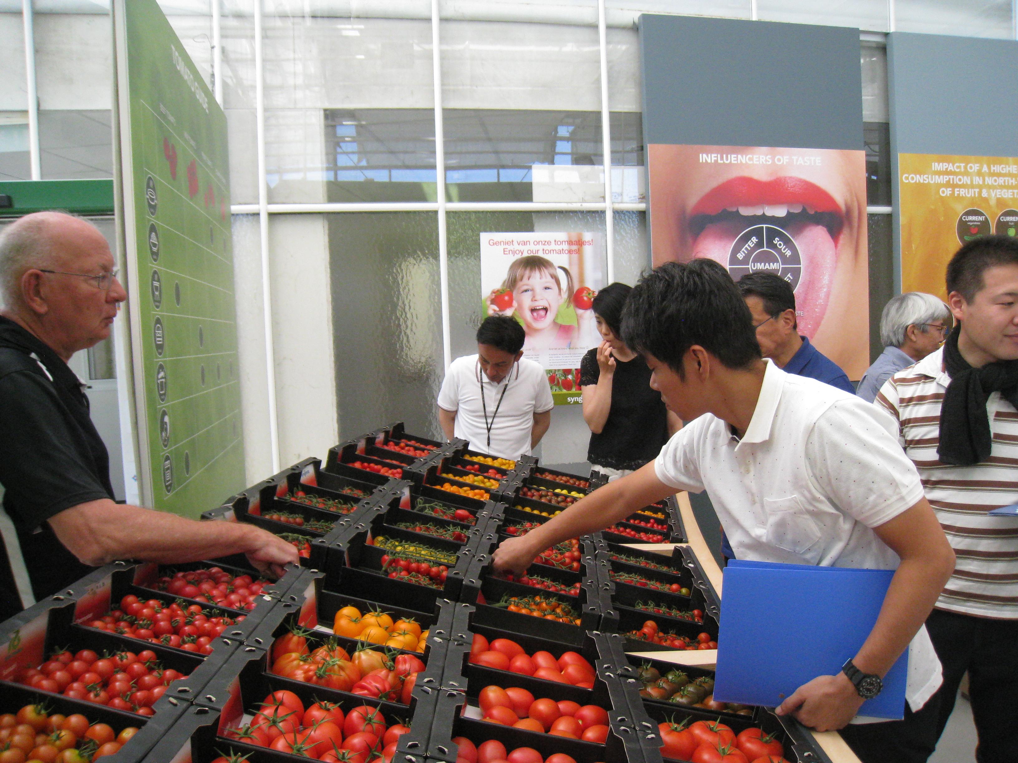 トマトの試食コーナー